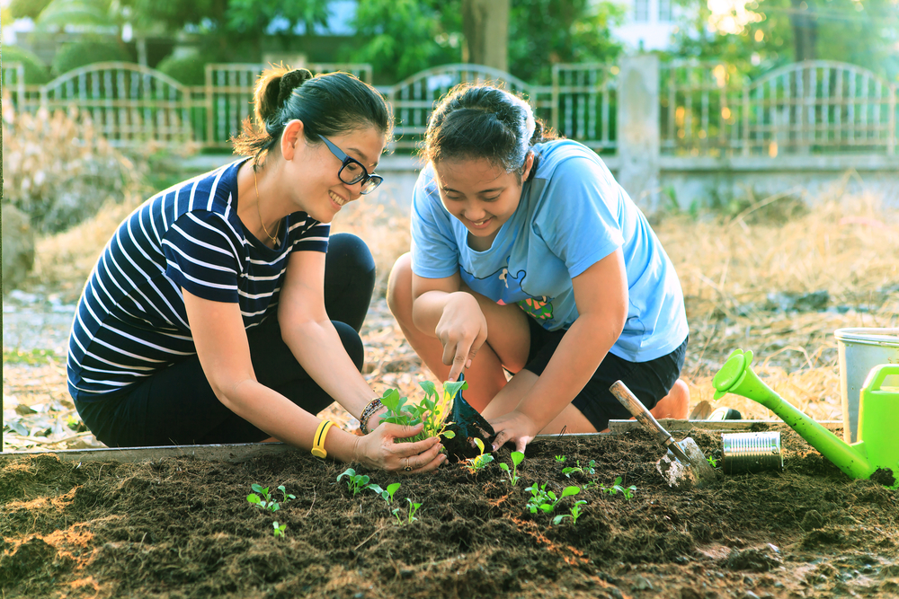 Girls planting a seedling
